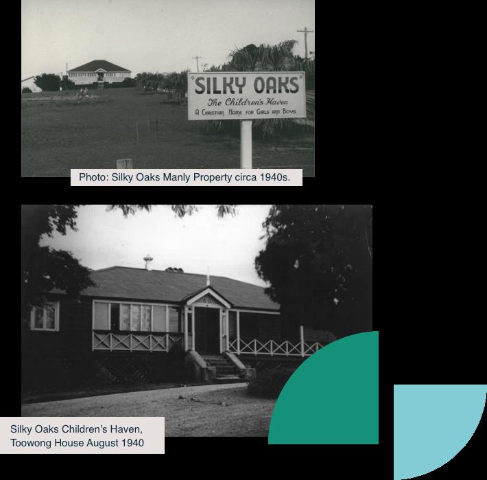 Silky Oaks History